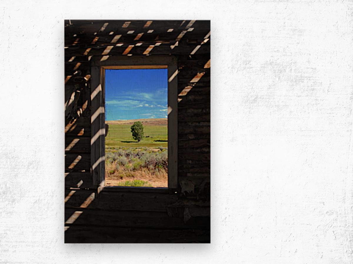 Wild Frontier Wood print