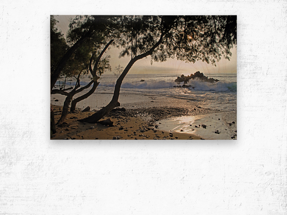 Wild Hawaii Beach Wood print