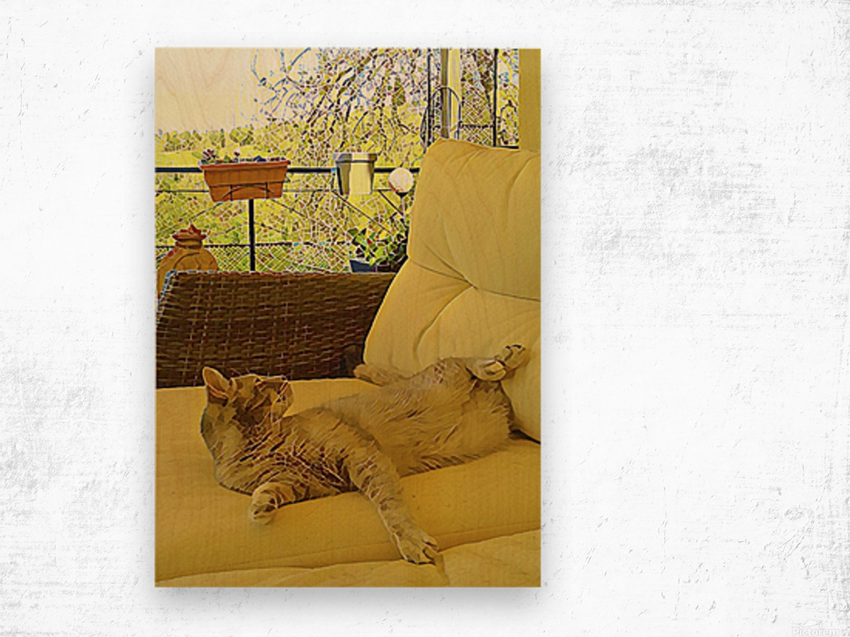 Lounging Around Wood print