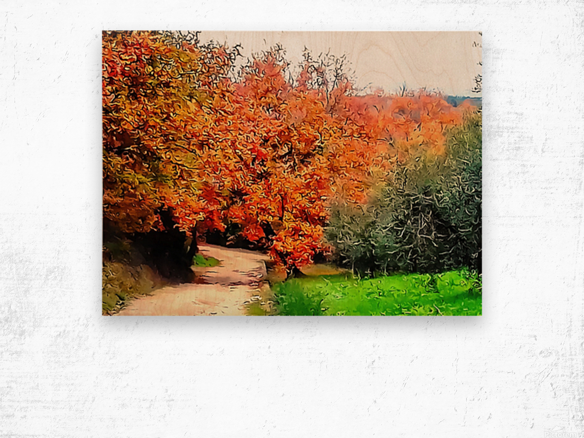 Autumn Golden Colours Umbria Wood print