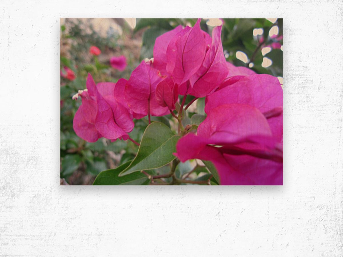 Flowers (47) Wood print