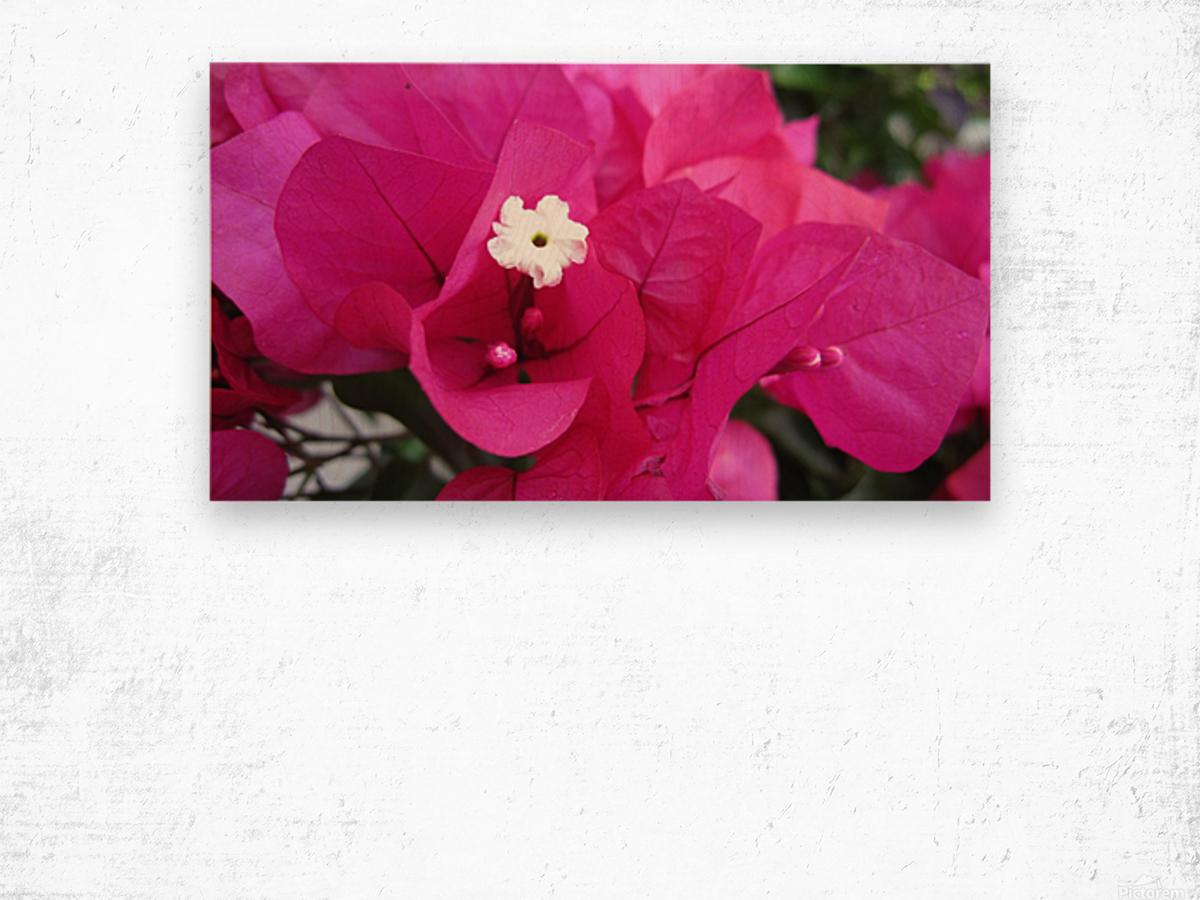 Flowers (95) Wood print