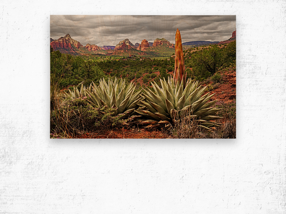 Storm over Sedona Wood print