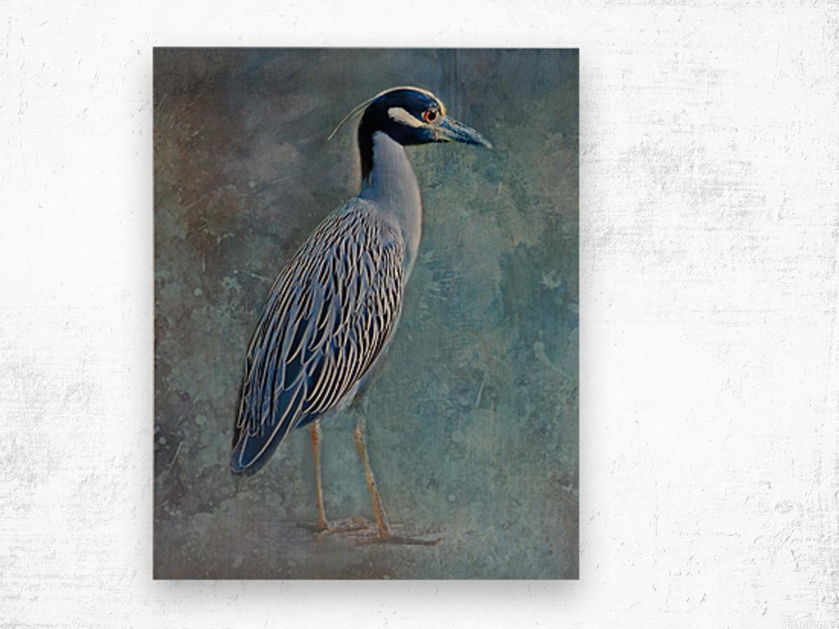 Night Heron Blues Wood print