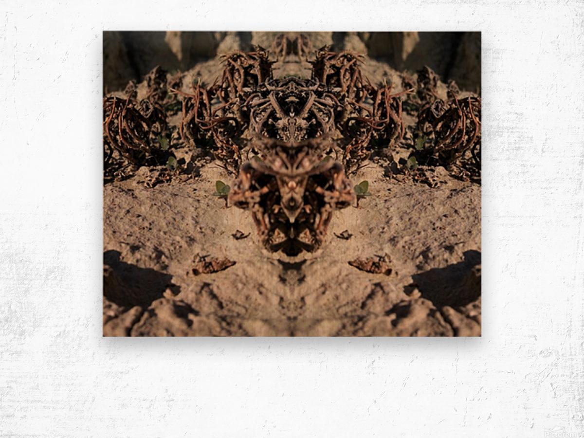 Ox Wood print