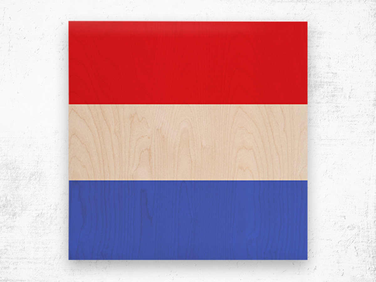 This is a beautiful design with great color, shape, line, texture, space and value.  (5) Wood print