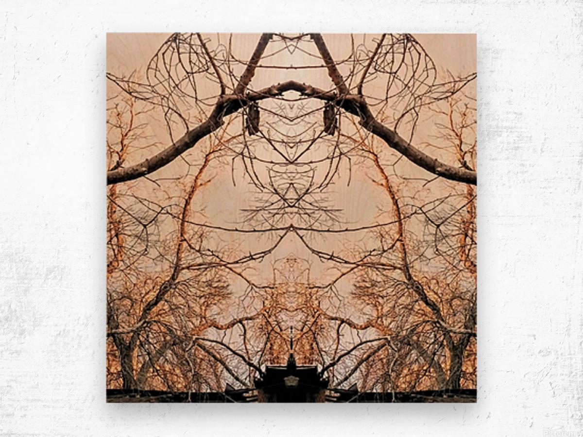 Ambassador Wood print