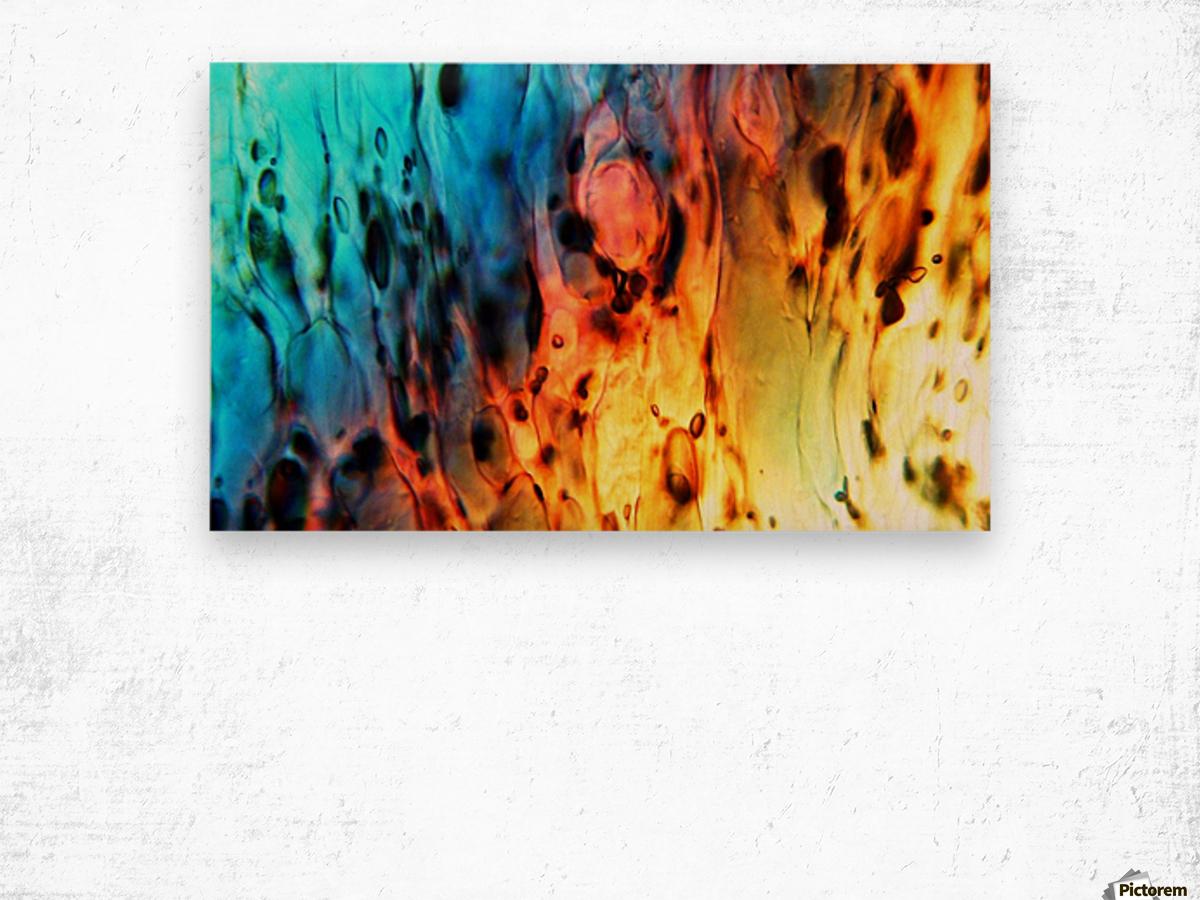 Fire Woman Wood print