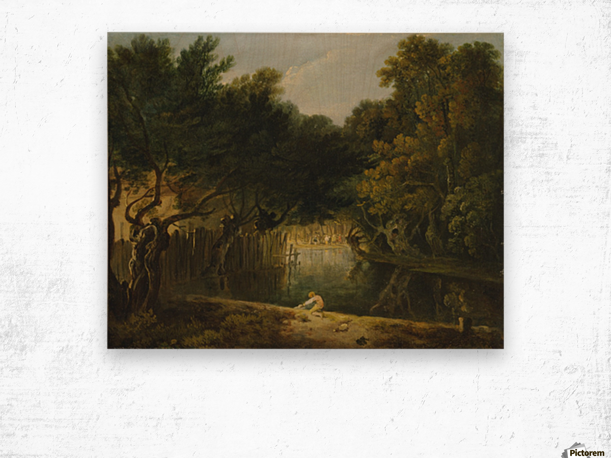 View of the Wilderness in St. James's Park Wood print