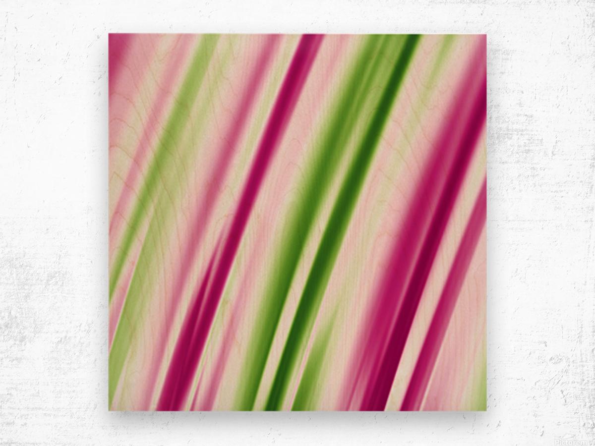 COOL DESIGN (27)_1561008490.6514 Wood print