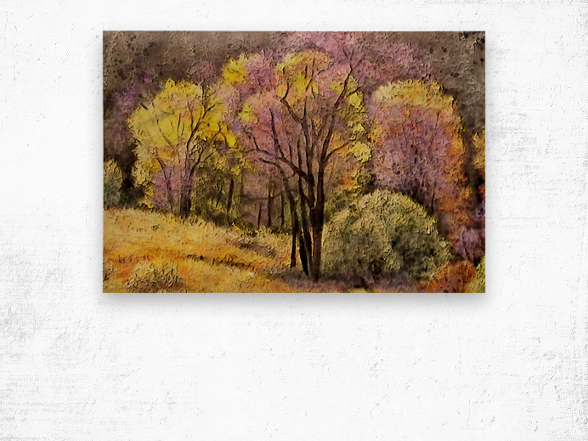 outdoor nature natural woods Wood print