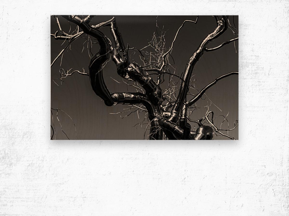 Metal tree Wood print