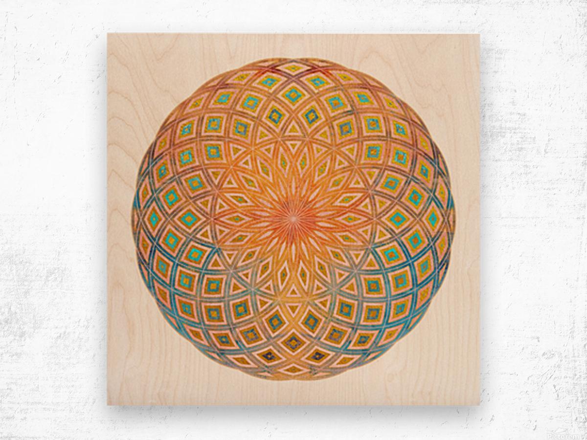 Life Geometry Wood print