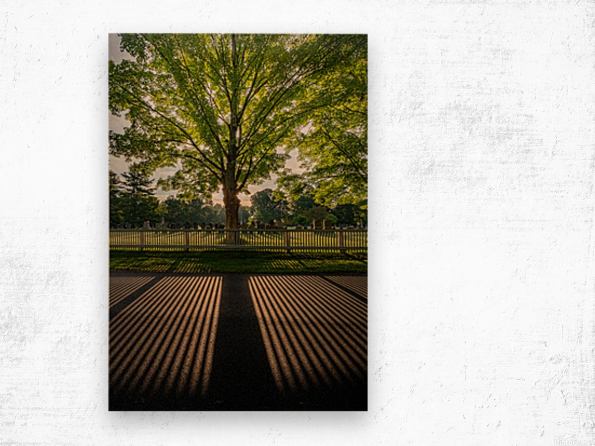 Sunrise in Dunstable Wood print