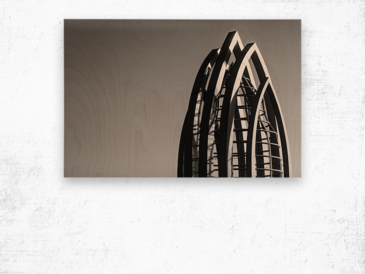 IMG_7617 Wood print