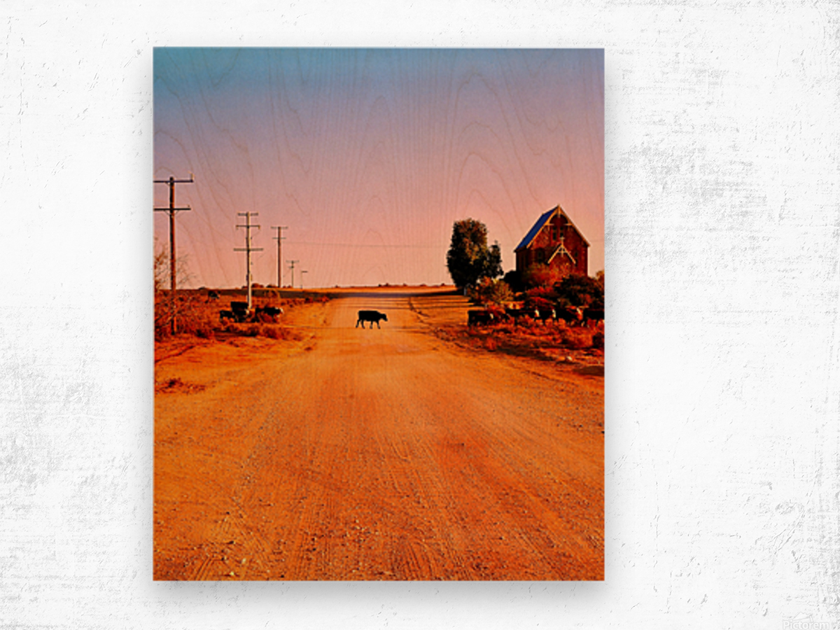 Quirky Sights of the Outback 1 Wood print