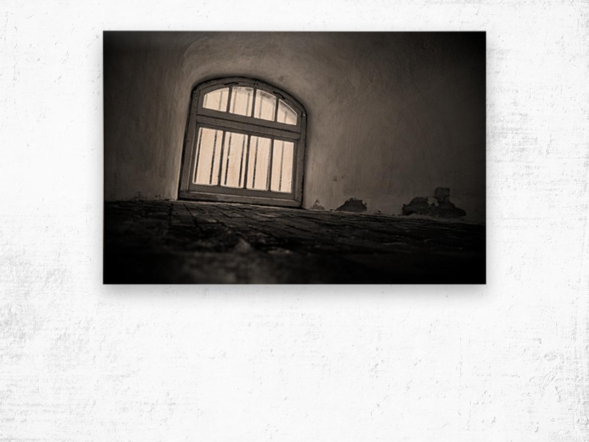 Prisoners View Wood print