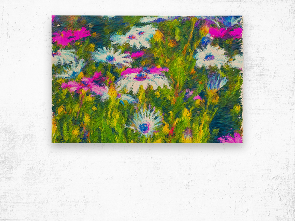 Joyful Daisy Field Wood print
