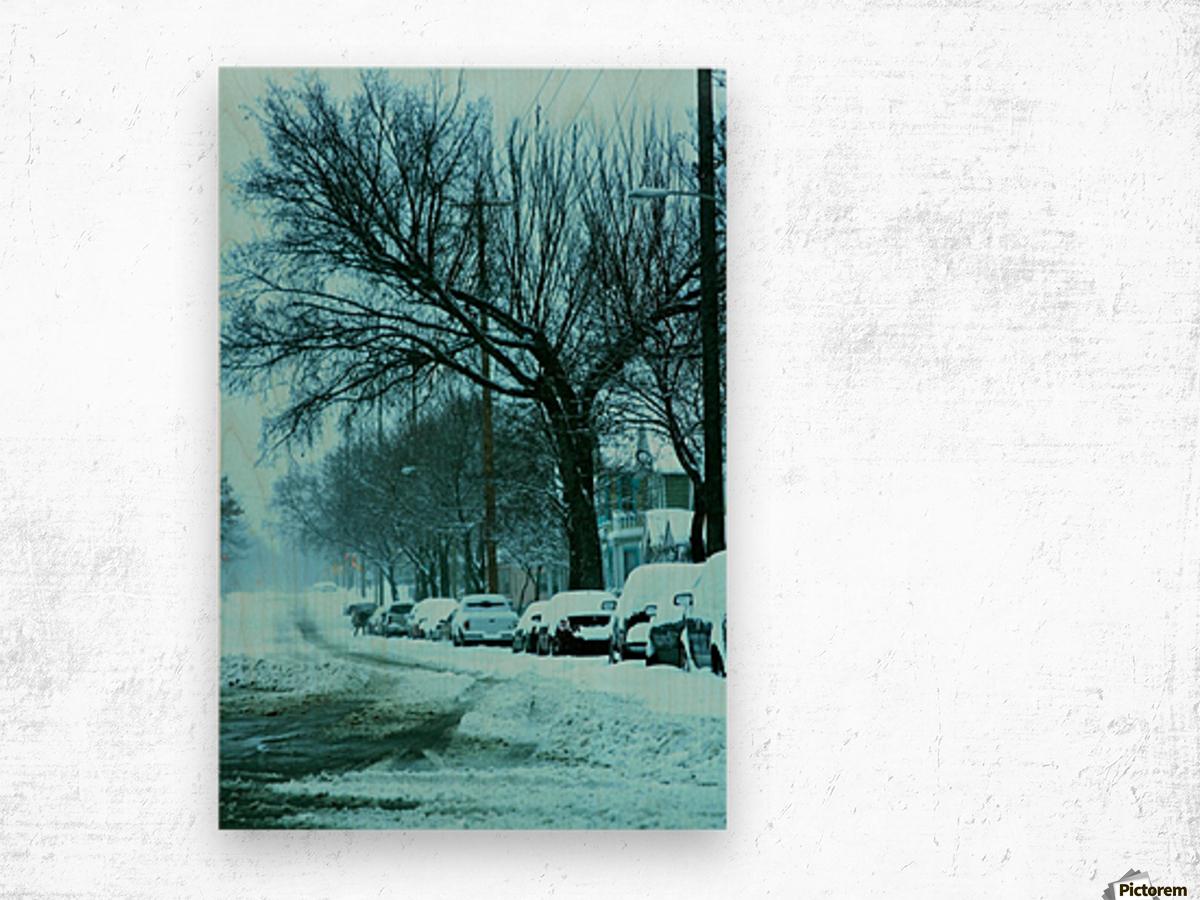Frost Wood print