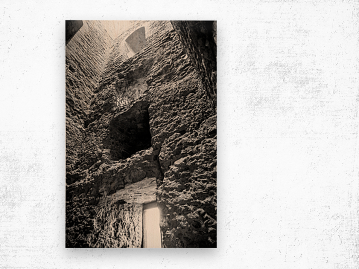 Kenilworth Castle Ruins Wood print