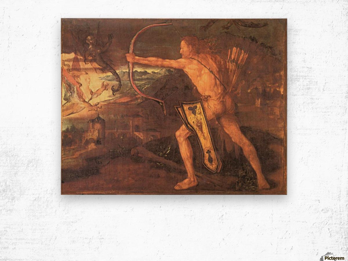 Hercules and the Stymphalian Birds Wood print