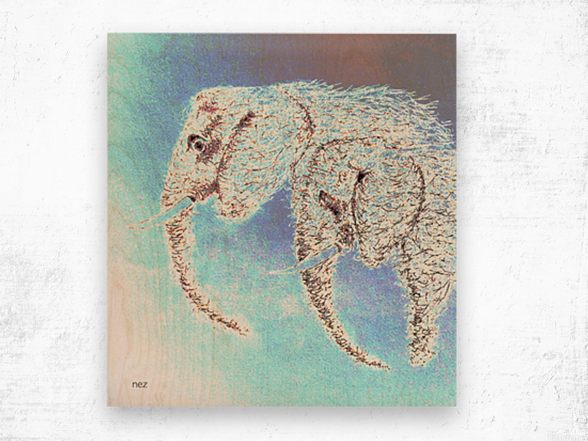 2 Elephants Wood print