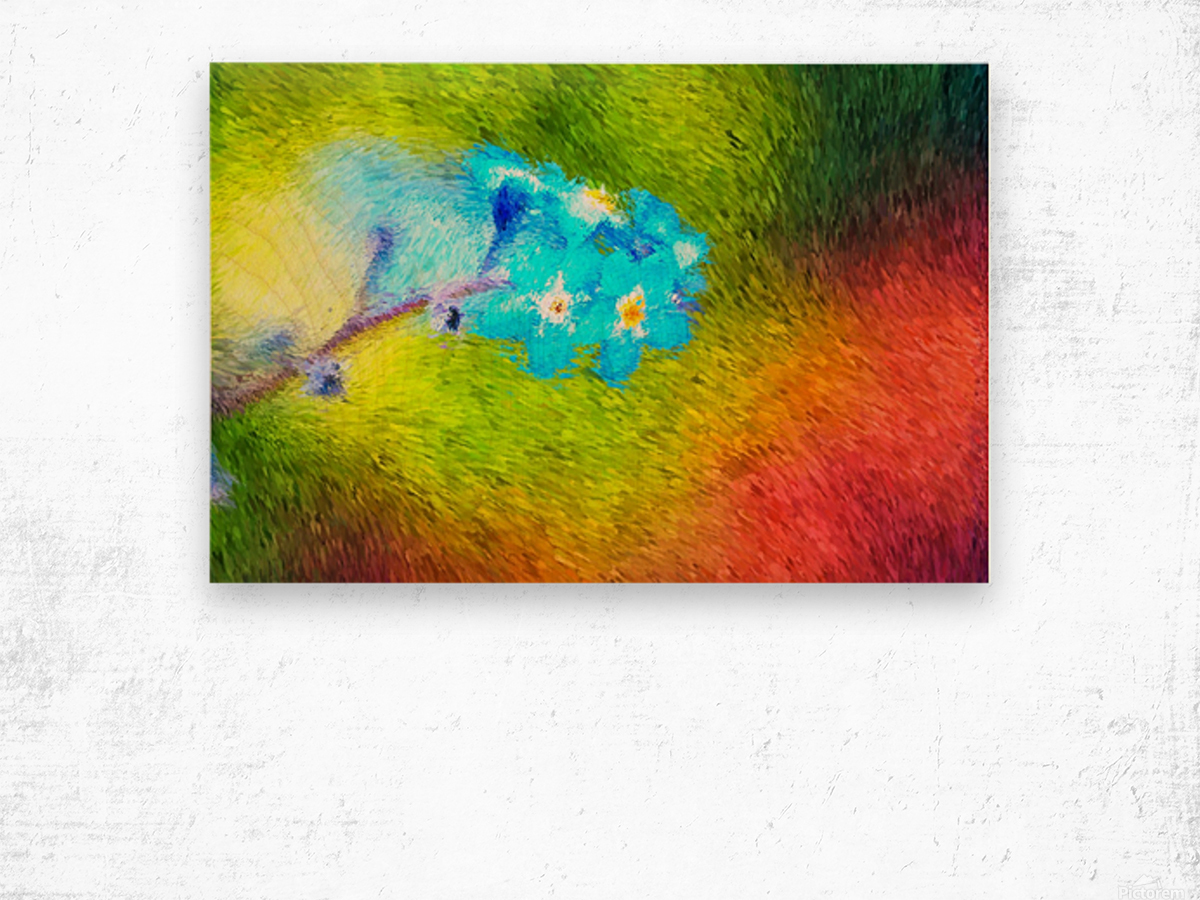 Forget Me Nots In The Wild  Wood print