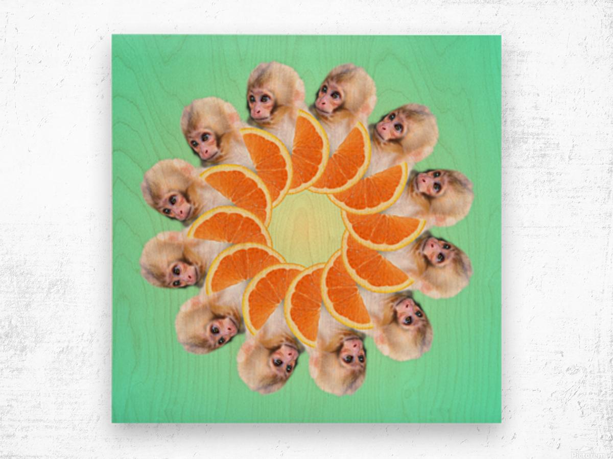 Orange you glad i didnt say Monkey 1080 Wood print