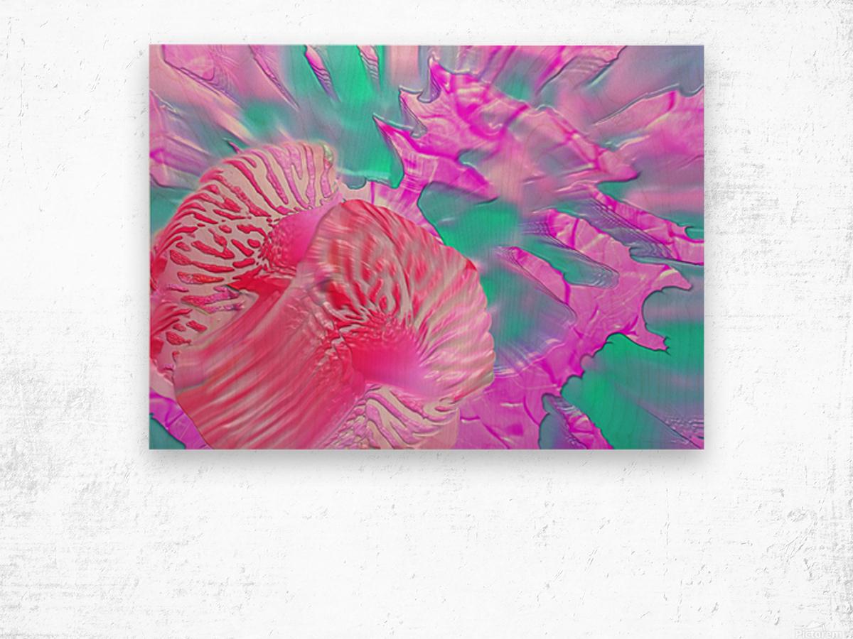 204 Wood print