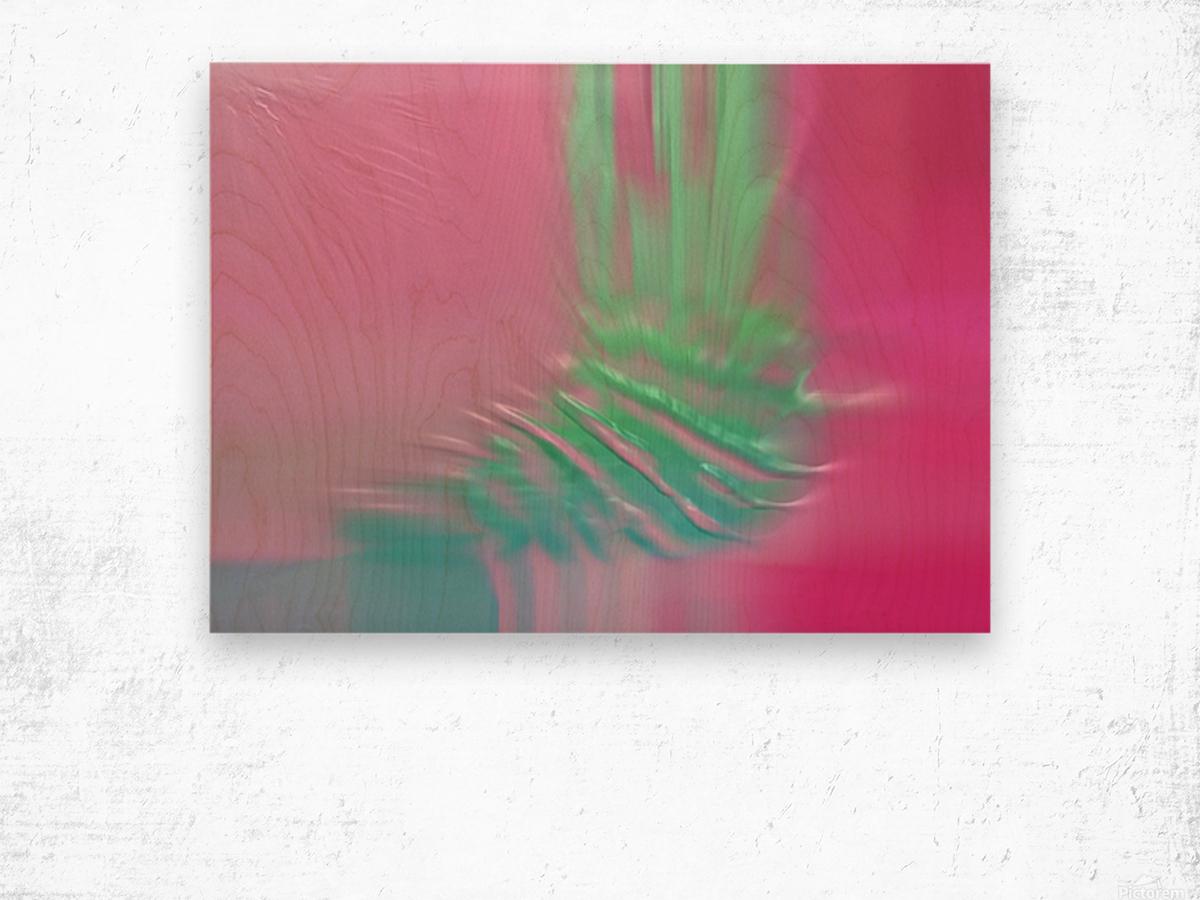 Ref: 876 Wood print