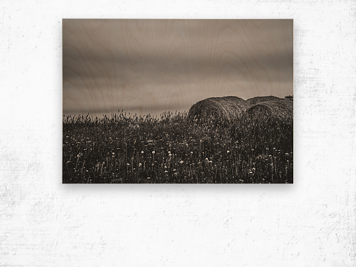 Haystacks Wood print