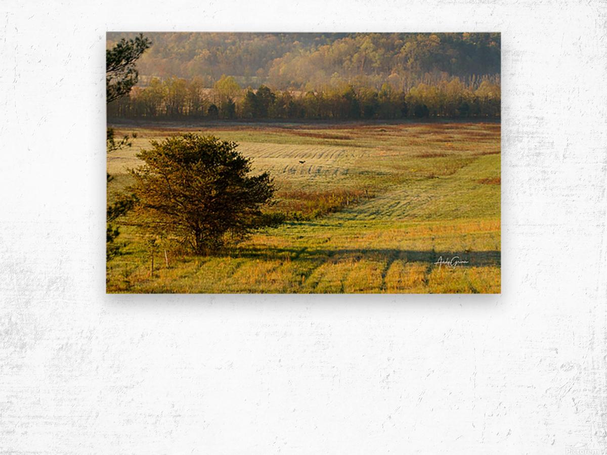 Lonely Walk Wood print
