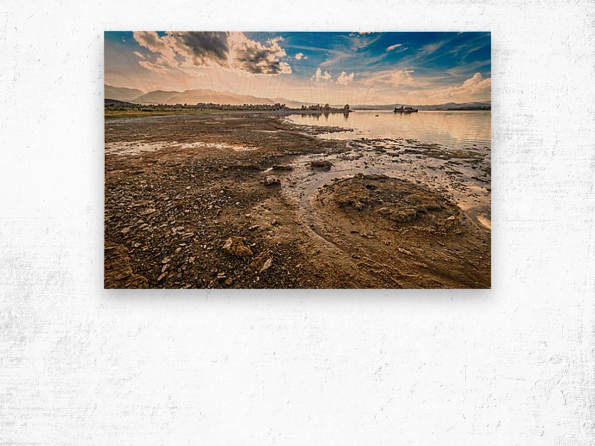 Mono Lake Shoreline Wood print