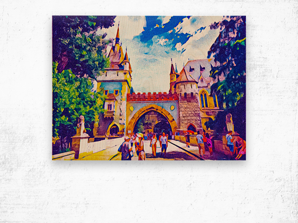 Vajdahunyad Castle Wood print