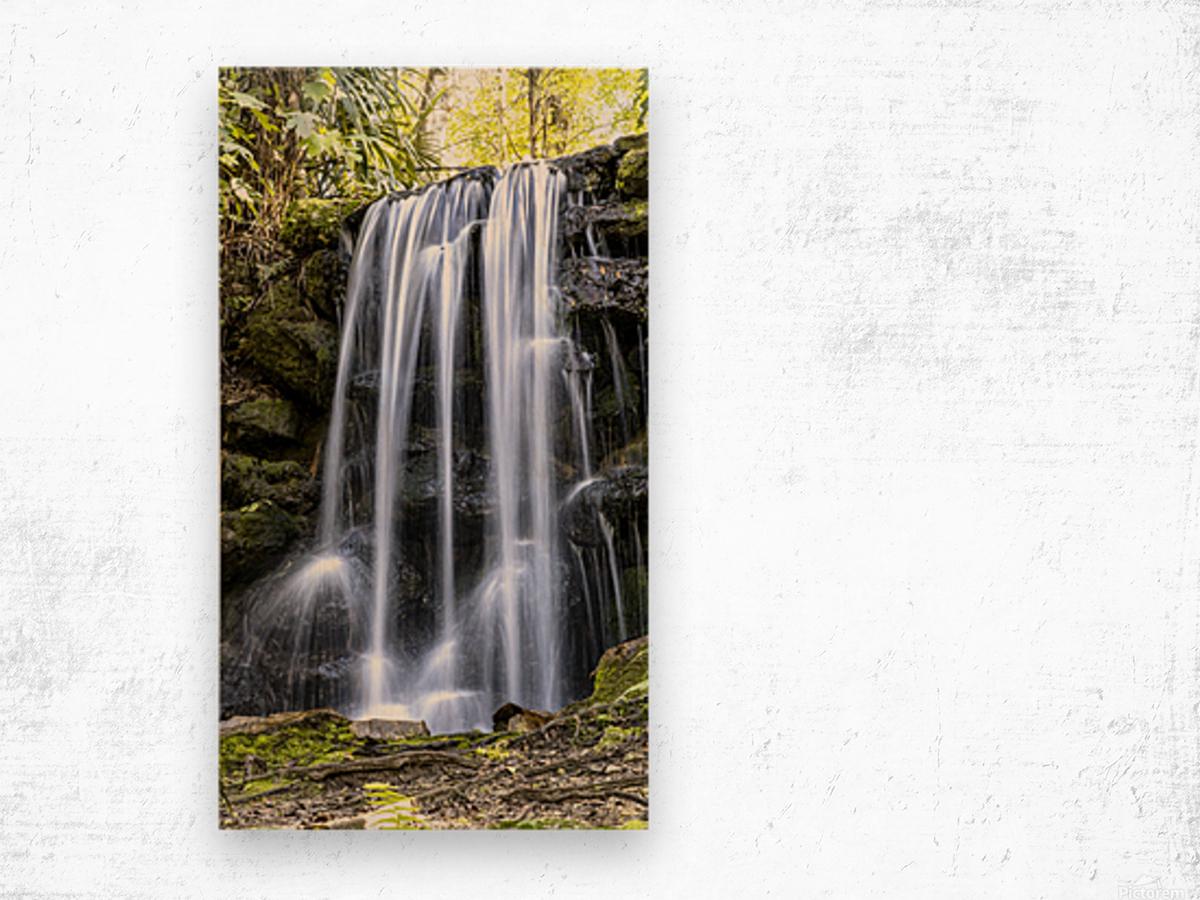 Rainbow Springs Falls Wood print