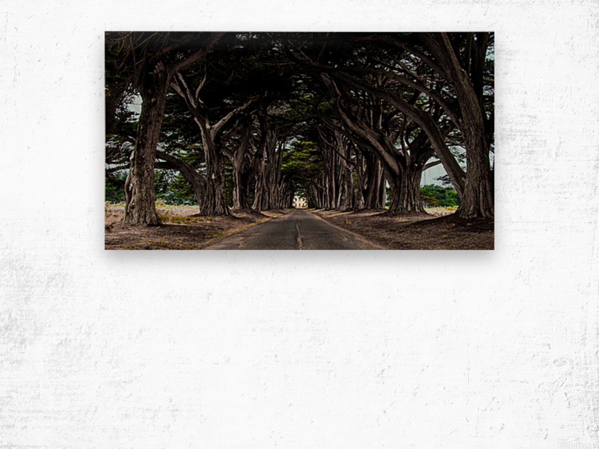No Light At The End of Tunnel Wood print