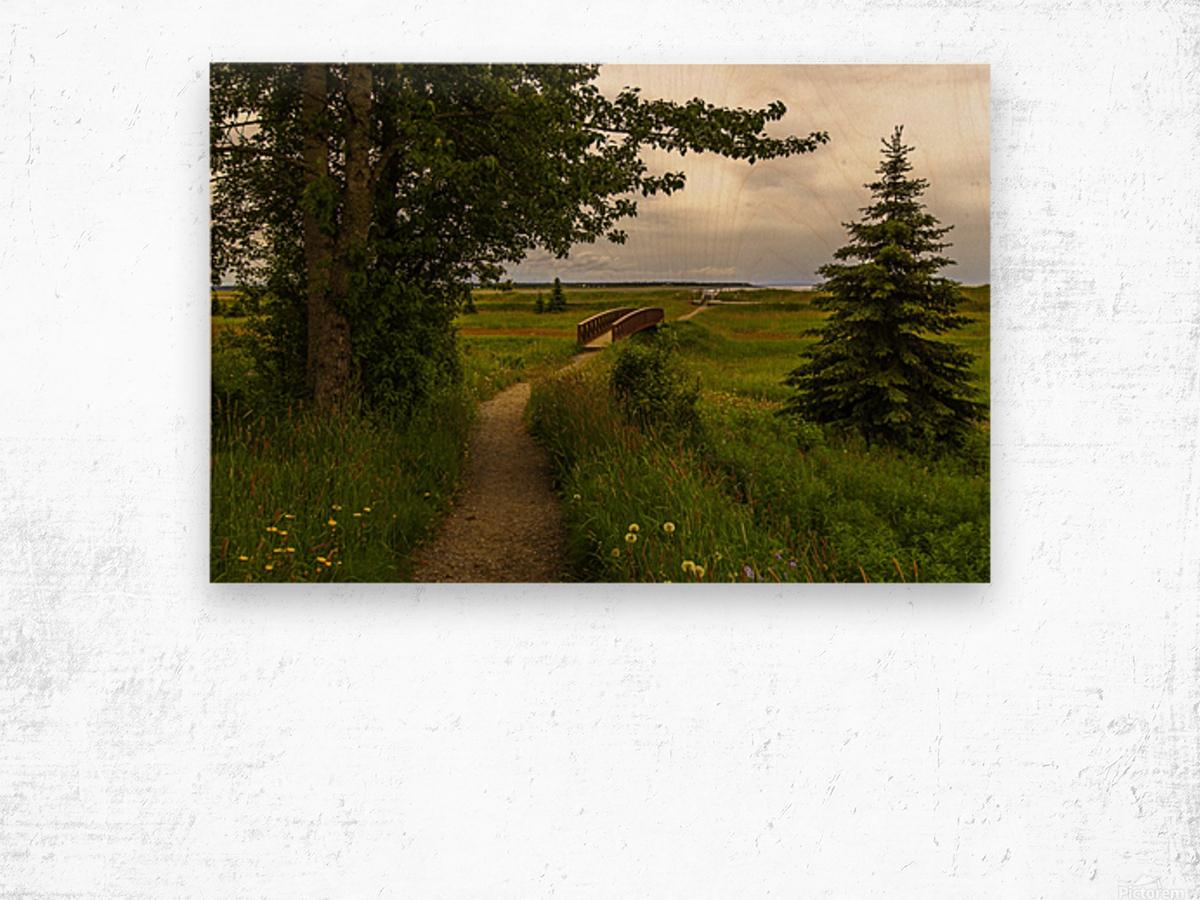 Walking Home Wood print
