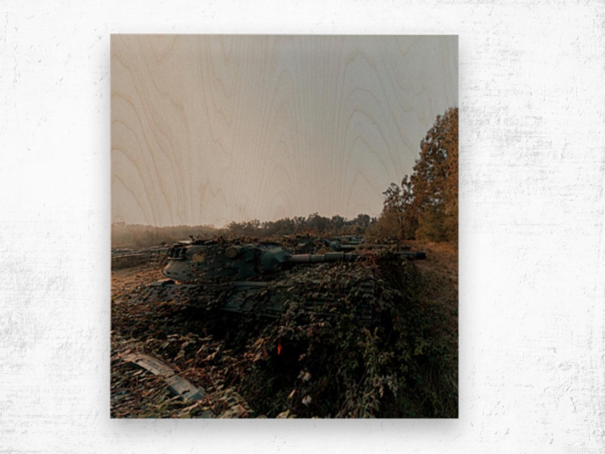 Abandoned Tank Graveyard w- Vines Wood print