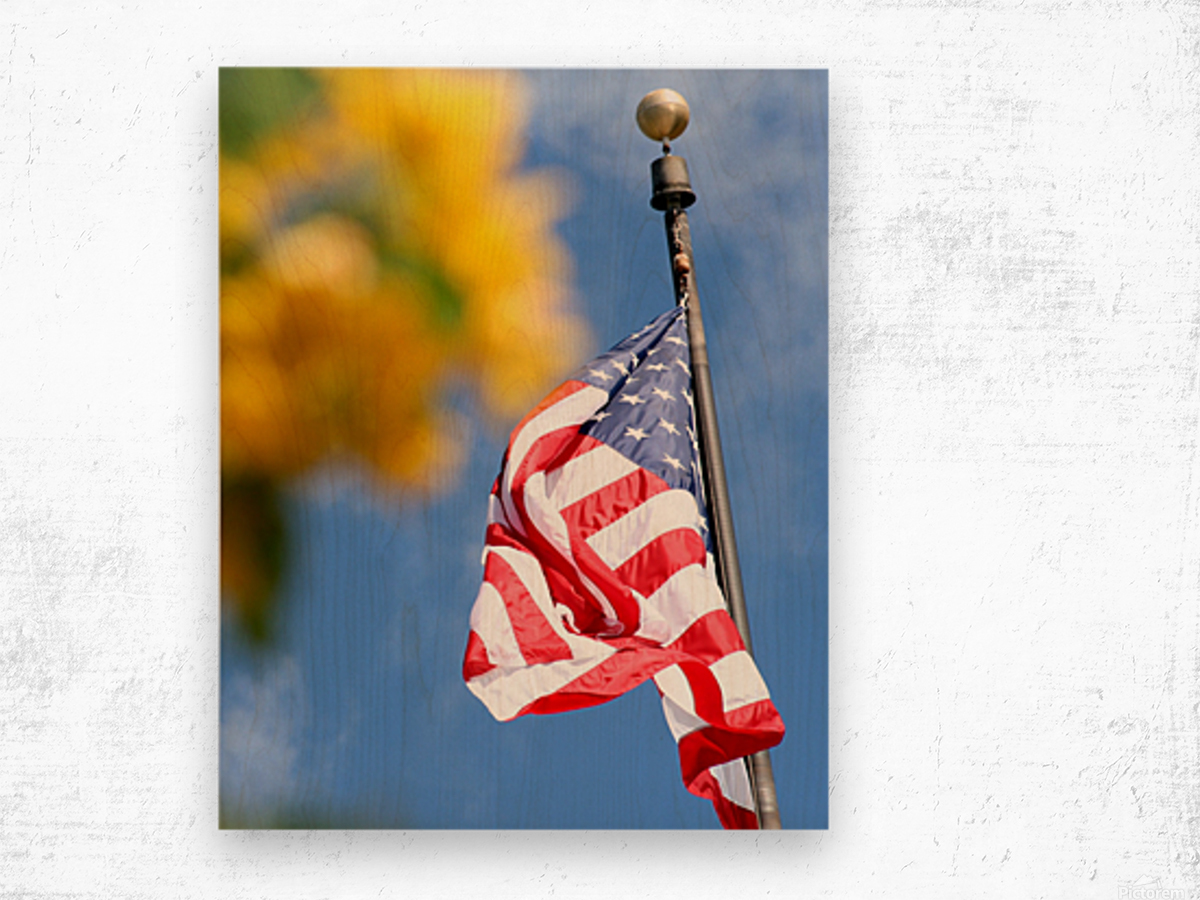 United States Flag Wood print