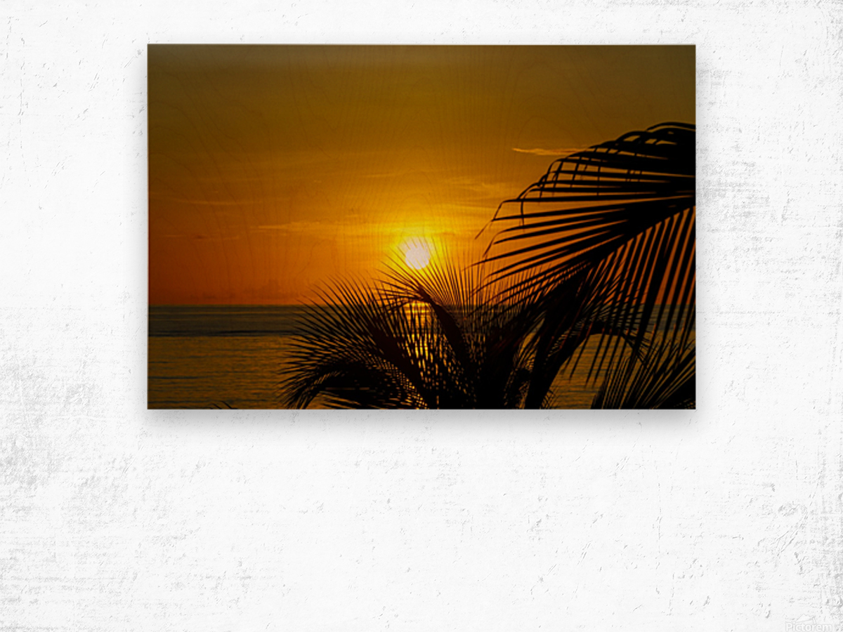 Sunrise at the palm tips Wood print