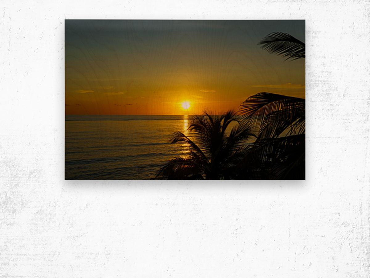 Caribbean Sunrise Wood print
