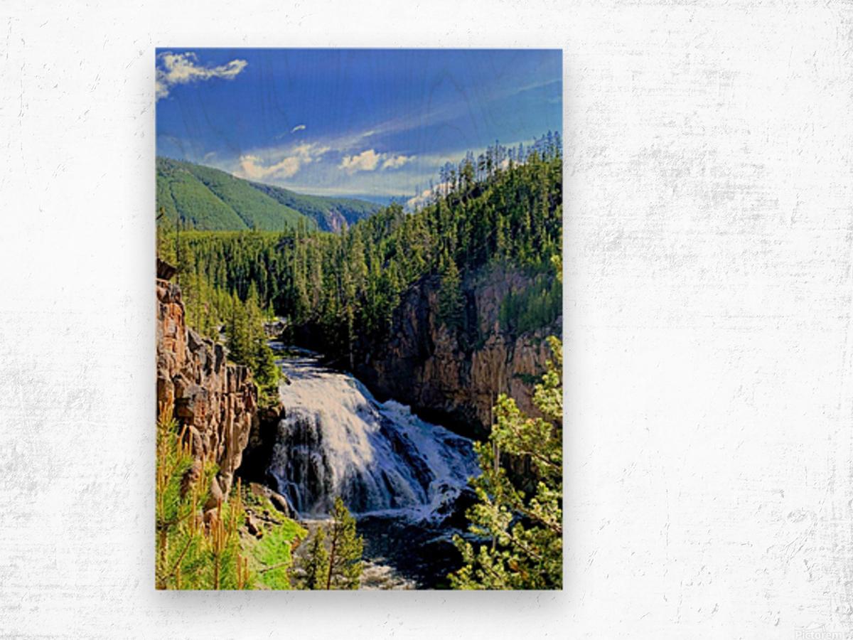 Majestic Waters Wood print