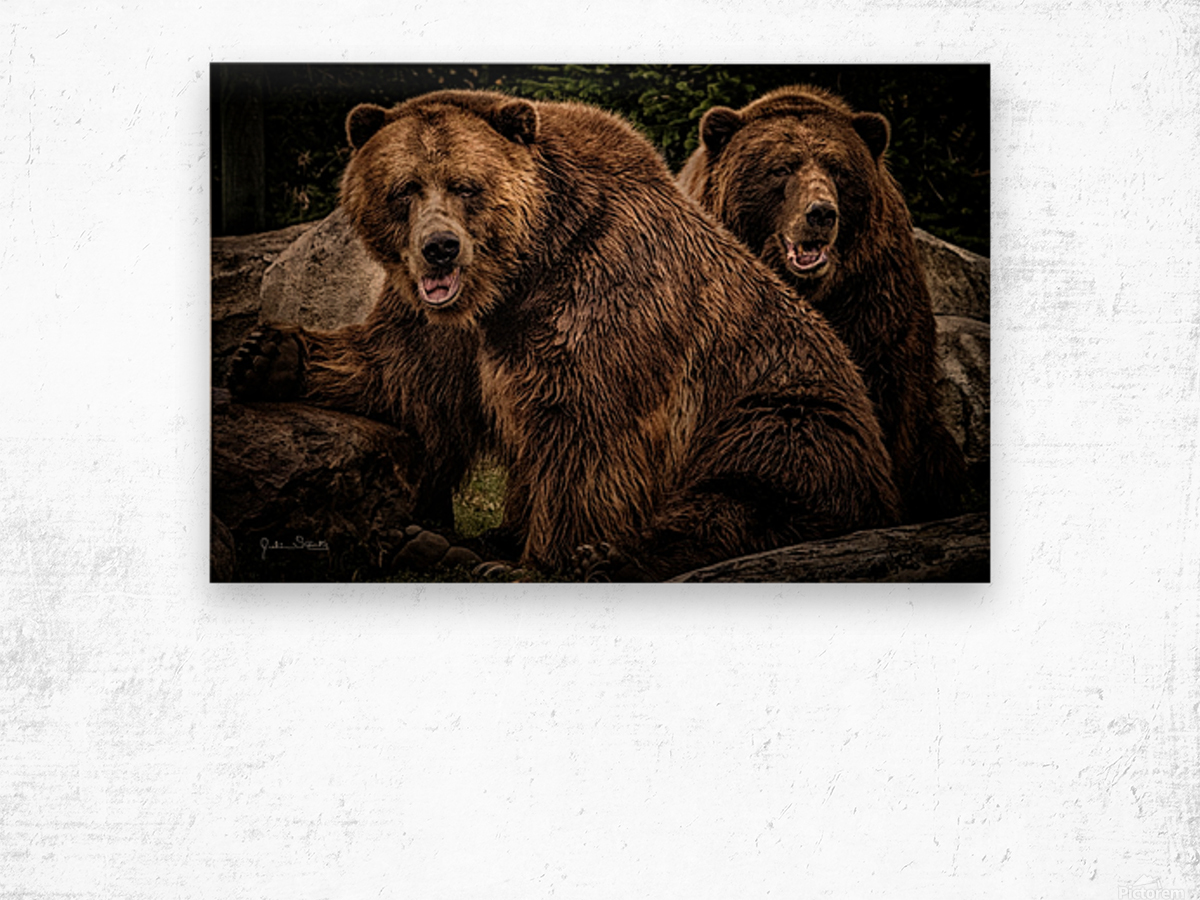 Brown Bear Brothers Wood print