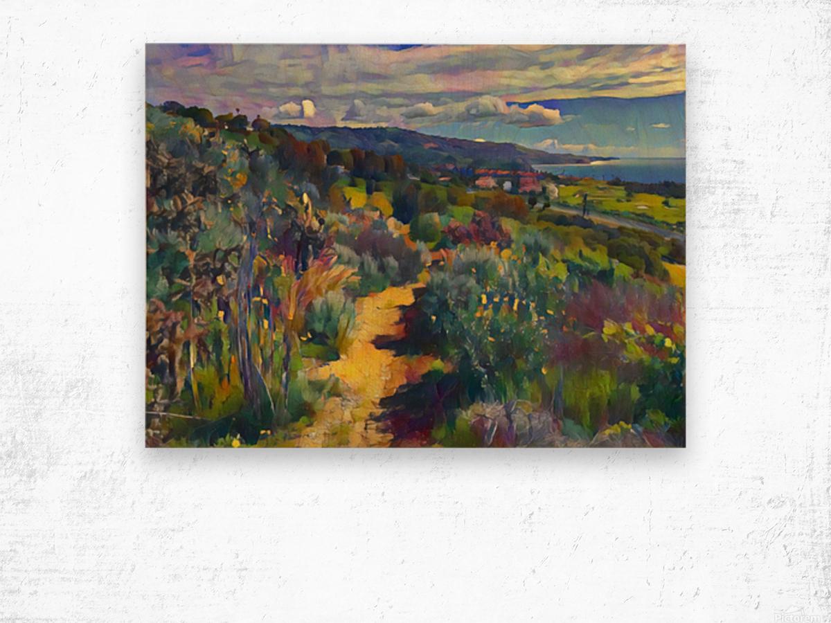 California spring hike Wood print