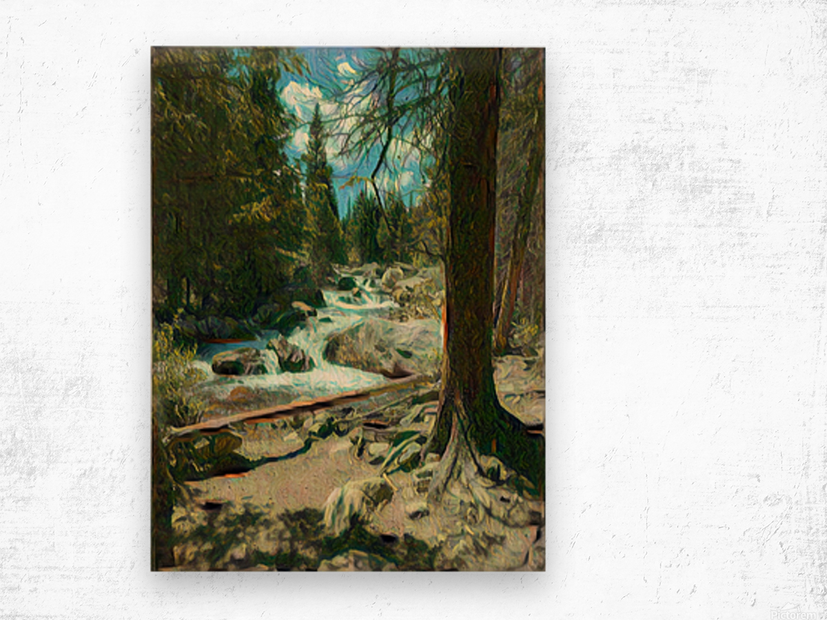 Rocky Mountain waterfall Wood print