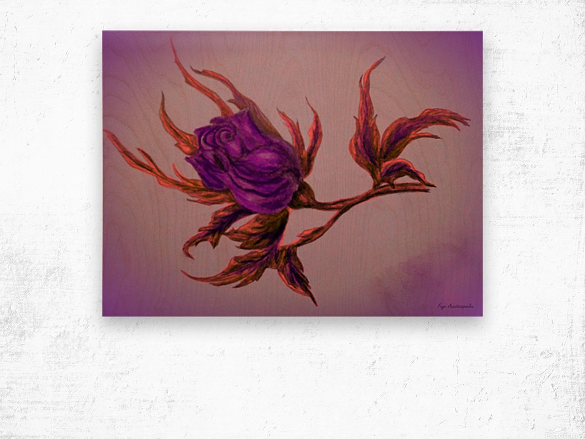 Decorative Wild Rose Wood print