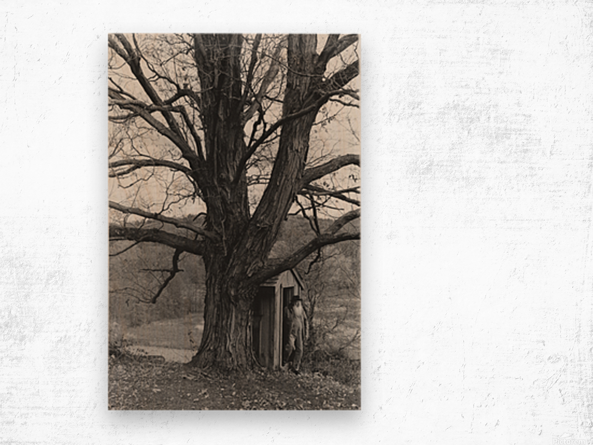 Soul of the Wallkill Wood print