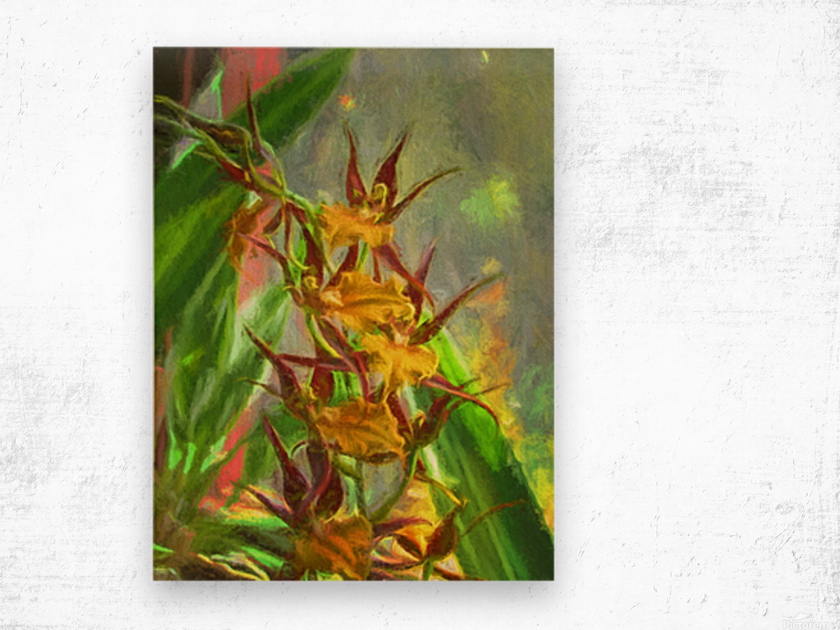 Hawaiian Orchids Watercolor Wood print