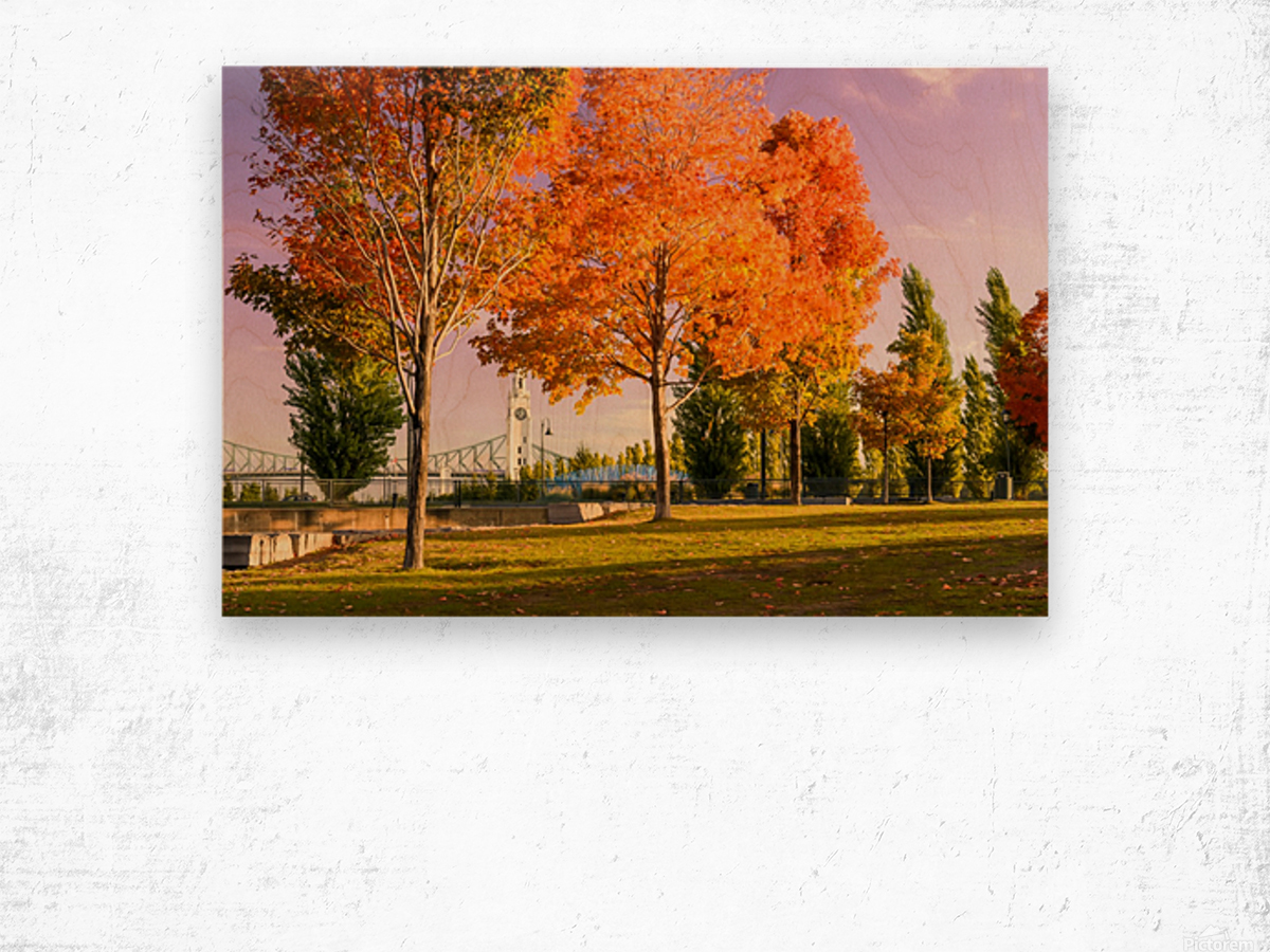 Autumn In The Old Port Of Montreal Wood print