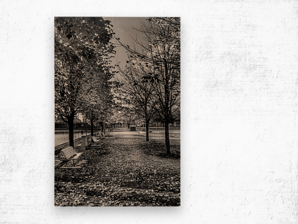 Old Port Of Montreal Autumn B&W Wood print